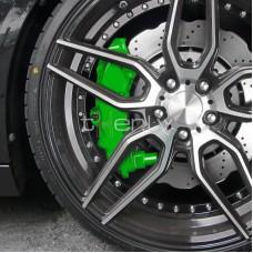 Bremžu supporta krāsošanas komplekts, zaļš.