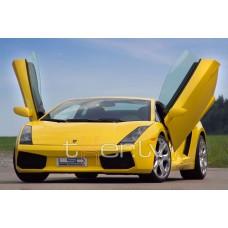 Lamborghini Gallardo (03-) LSD