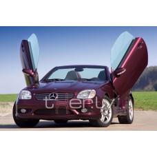 Mercedes r170 (96-) LSD